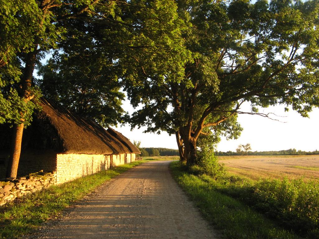 Autor: Marie Virta. Läänemaa, Hanila vald, Kõera küla, Mihkli-Jaani talu.