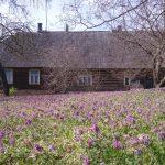 Eripreemia: Parim pilt teemal Taluhäärber. Autor: Harri Lumiste. Põlvamaa, Vastse-Kuuste vald, Padari küla, Pari talu.