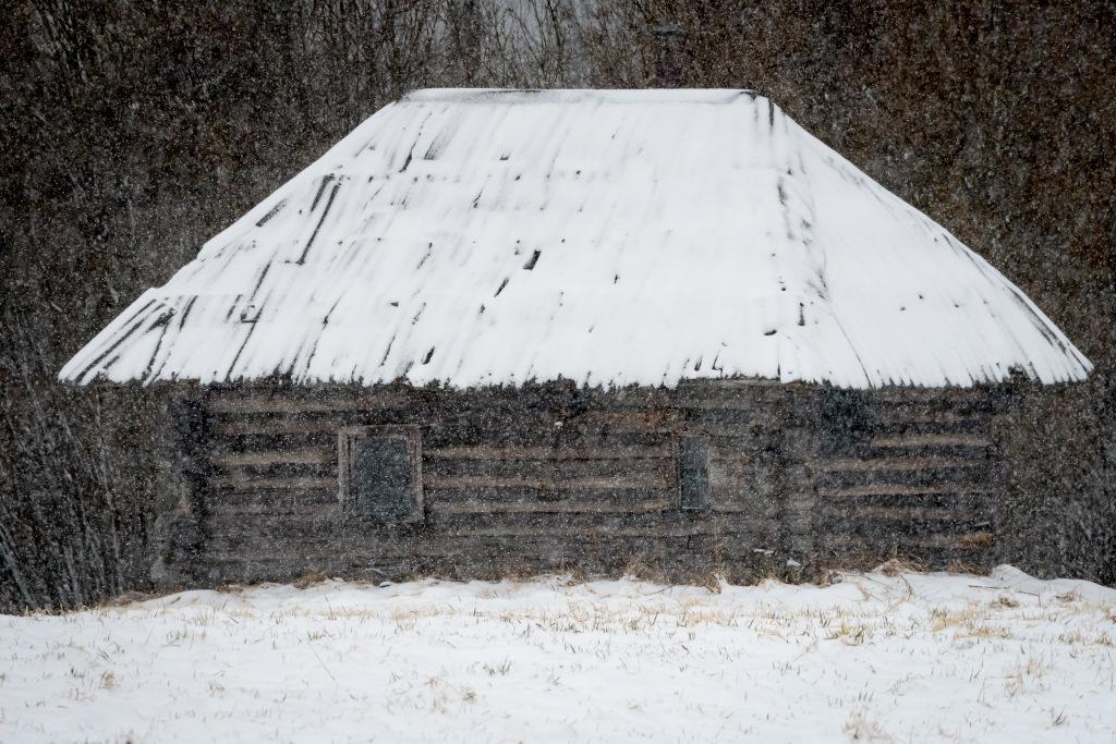 Eripreemia: Parim pilt teemal Palksaun. Autor: Jaanus Tanilsoo. Võrumaa, Võru vald, Mõksi küla.