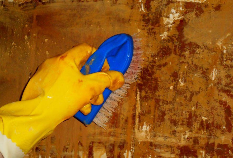 Pärast kompressisegu eemaldamist tuleb puhastatud pind veega loputada, seejärel orgaanilise happe lahusega neutraliseerida ja pärast uuesti puhta veega loputada.
